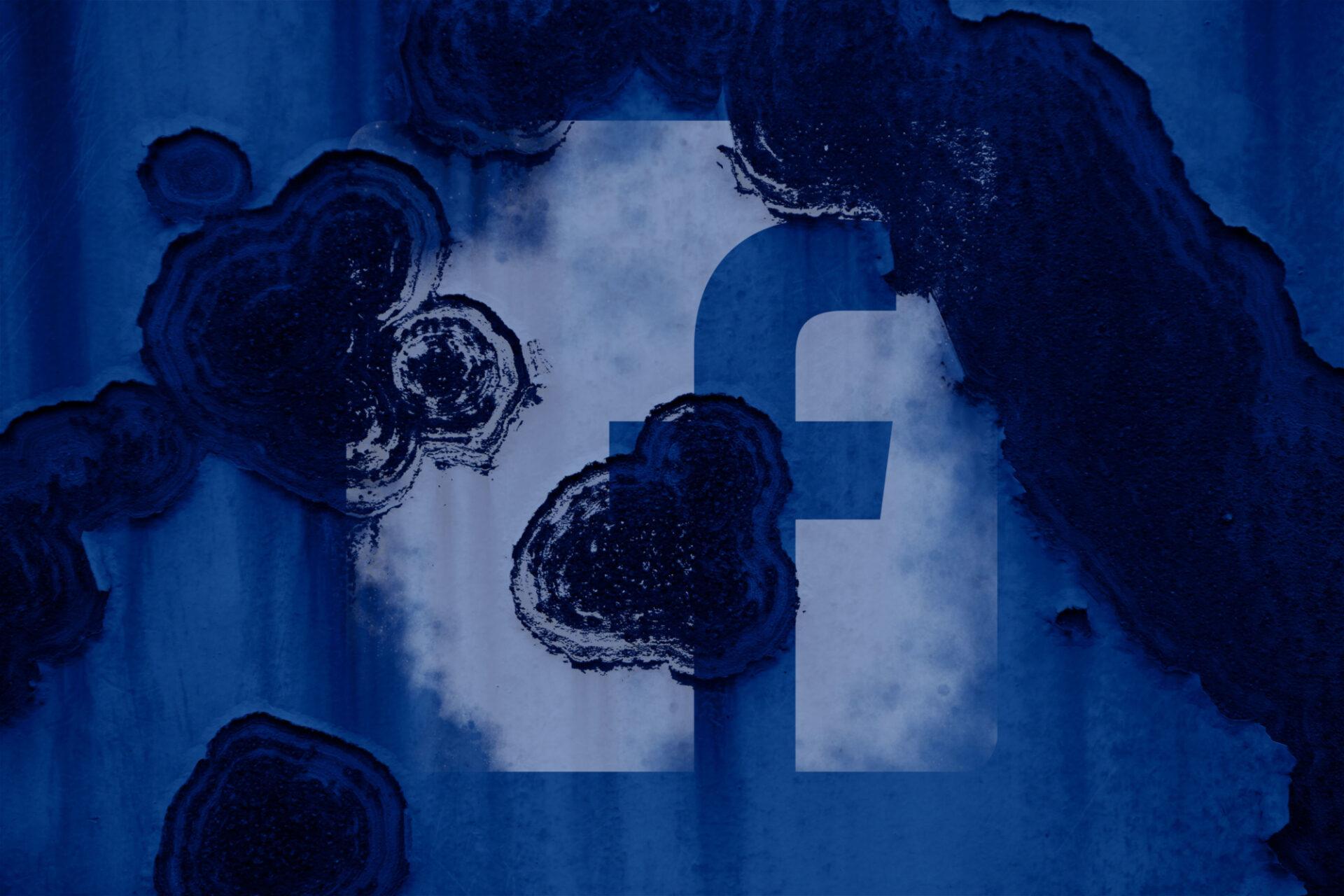 Et si l'on brisait le monolithe qu'est Facebook?